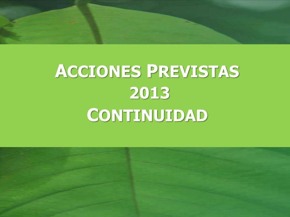 A CCIONES P REVISTAS 2013 2013 C ONTINUIDAD