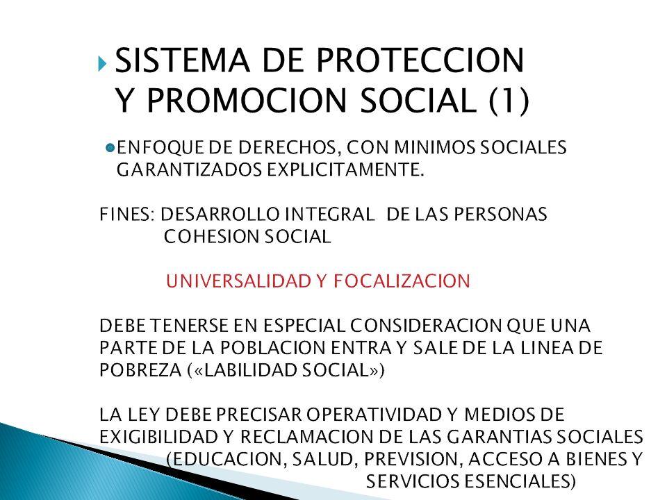 SISTEMA DE PROTECCION Y PROMOCION SOCIAL (2) POLITICAS SOCIALES.