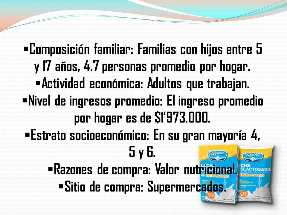 Composición familiar: Familias con hijos entre 5 y 17 años, 4.7 personas promedio por hogar. Actividad económica: Adultos que trabajan. Nivel de ingre