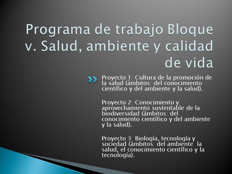Proyecto 1: Cultura de la promoción de la salud (ámbitos: del conocimiento científico y del ambiente y la salud).