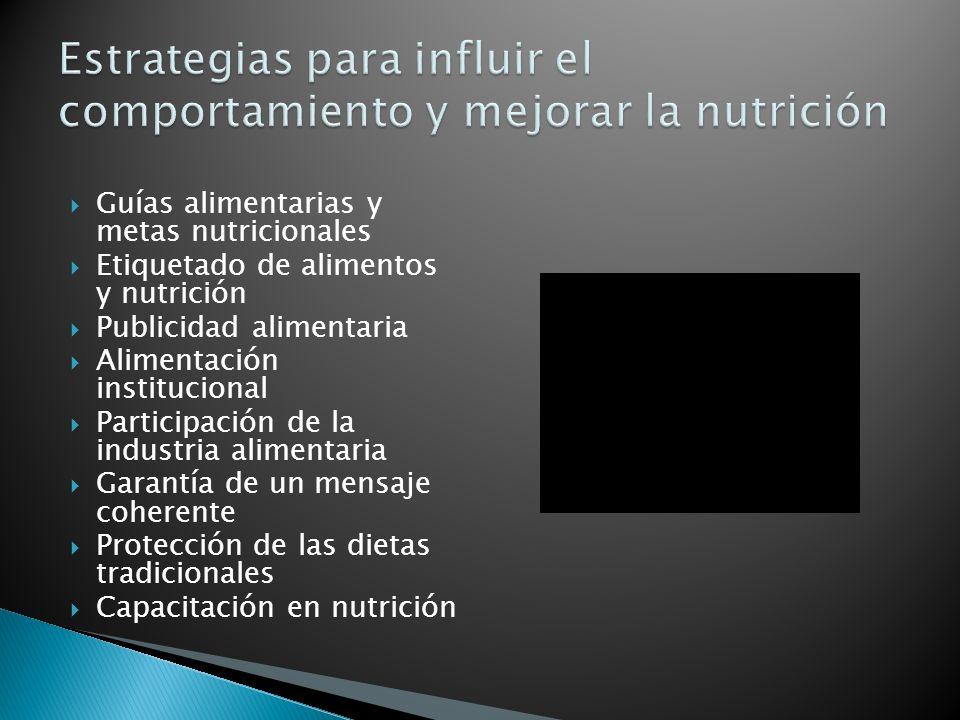 Guías alimentarias y metas nutricionales Etiquetado de alimentos y nutrición Publicidad alimentaria Alimentación institucional Participación de la industria alimentaria Garantía de un mensaje coherente Protección de las dietas tradicionales Capacitación en nutrición