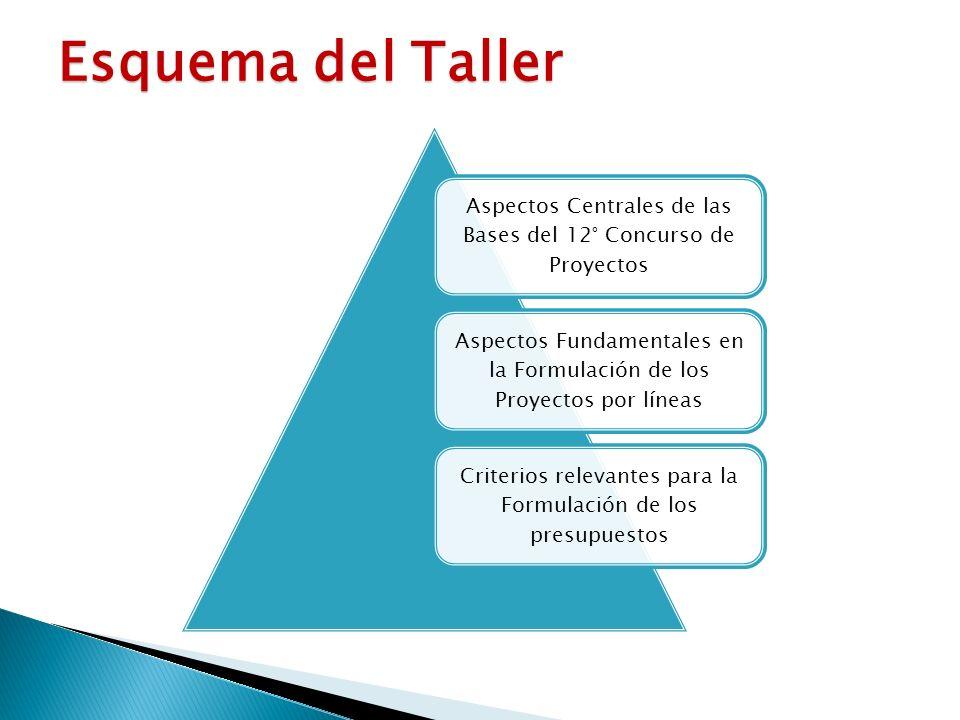 Aspectos Centrales de las Bases del 12° Concurso de Proyectos Aspectos Fundamentales en la Formulación de los Proyectos por líneas Criterios relevantes para la Formulación de los presupuestos Esquema del Taller