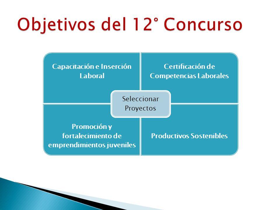 Capacitación e Inserción Laboral Certificación de Competencias Laborales Promoción y fortalecimiento de emprendimientos juveniles Productivos Sostenib