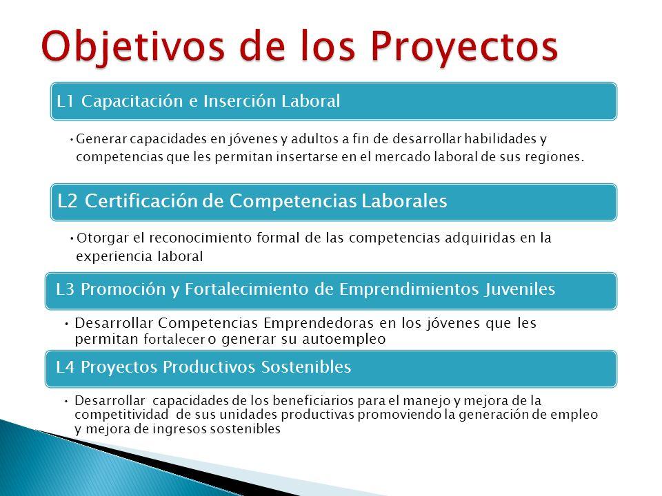 L1 Capacitación e Inserción Laboral Generar capacidades en jóvenes y adultos a fin de desarrollar habilidades y competencias que les permitan insertarse en el mercado laboral de sus regiones.