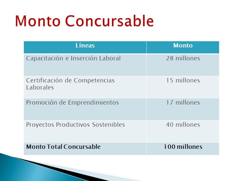 LíneasMonto Capacitación e Inserción Laboral28 millones Certificación de Competencias Laborales 15 millones Promoción de Emprendimientos17 millones Proyectos Productivos Sostenibles40 millones Monto Total Concursable100 millones