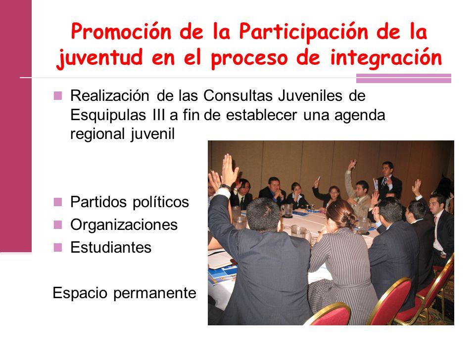 Promoción de la Participación de la juventud en el proceso de integración Realización de las Consultas Juveniles de Esquipulas III a fin de establecer una agenda regional juvenil Partidos políticos Organizaciones Estudiantes Espacio permanente