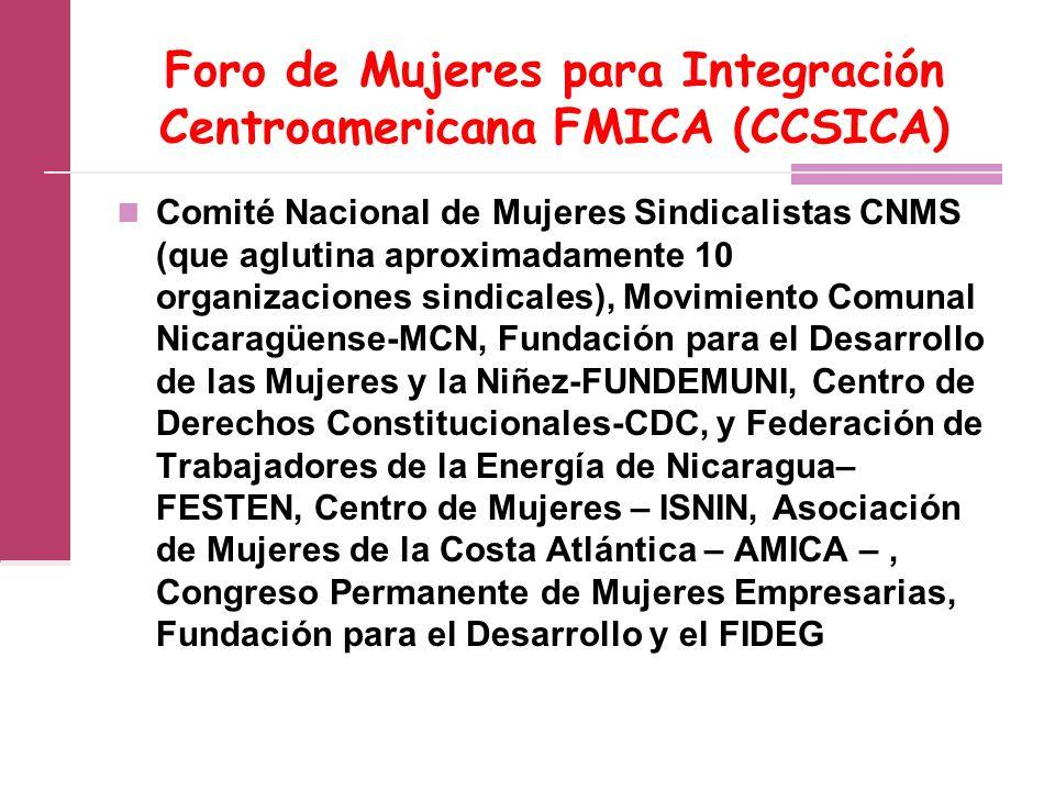 Foro de Mujeres para Integración Centroamericana FMICA (CCSICA) Comité Nacional de Mujeres Sindicalistas CNMS (que aglutina aproximadamente 10 organizaciones sindicales), Movimiento Comunal Nicaragüense-MCN, Fundación para el Desarrollo de las Mujeres y la Niñez-FUNDEMUNI, Centro de Derechos Constitucionales-CDC, y Federación de Trabajadores de la Energía de Nicaragua– FESTEN, Centro de Mujeres – ISNIN, Asociación de Mujeres de la Costa Atlántica – AMICA –, Congreso Permanente de Mujeres Empresarias, Fundación para el Desarrollo y el FIDEG