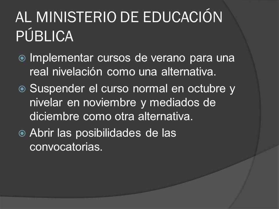 AL MINISTERIO DE EDUCACIÓN PÚBLICA Implementar cursos de verano para una real nivelación como una alternativa.