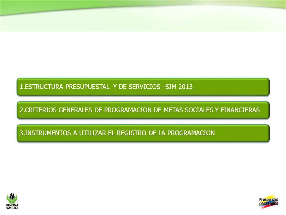1.ESTRUCTURA PRESUPUESTAL Y DE SERVICIOS –SIM 2013 2.CRITERIOS GENERALES DE PROGRAMACION DE METAS SOCIALES Y FINANCIERAS 3.INSTRUMENTOS A UTILIZAR EL