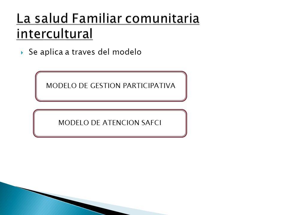 Gestión participativa de salud a nivel Nacional CSD Bolivia CSN Planificación Plan Nacional de Salud Seguimiento Control del Plan CSD