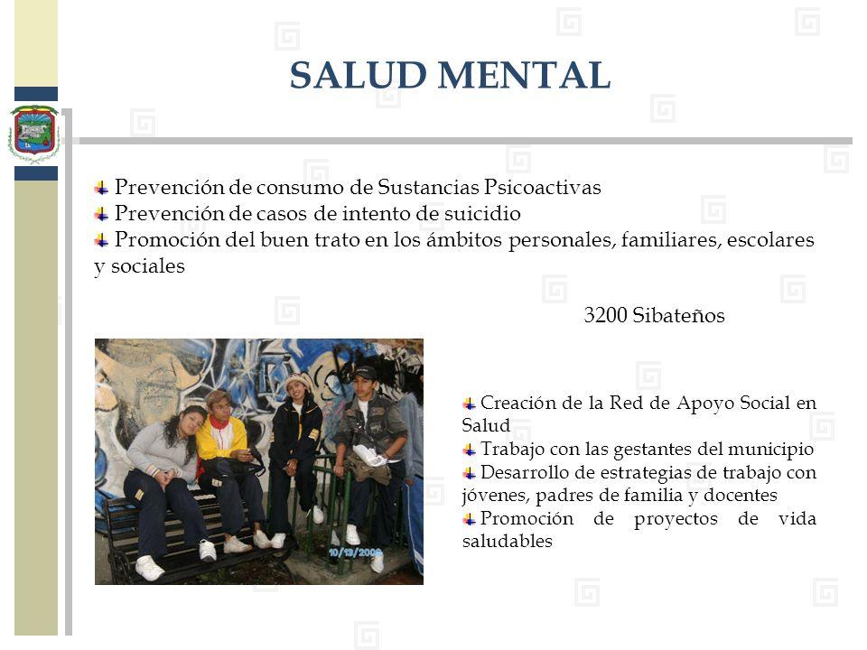 Prevención de consumo de Sustancias Psicoactivas Prevención de casos de intento de suicidio Promoción del buen trato en los ámbitos personales, famili