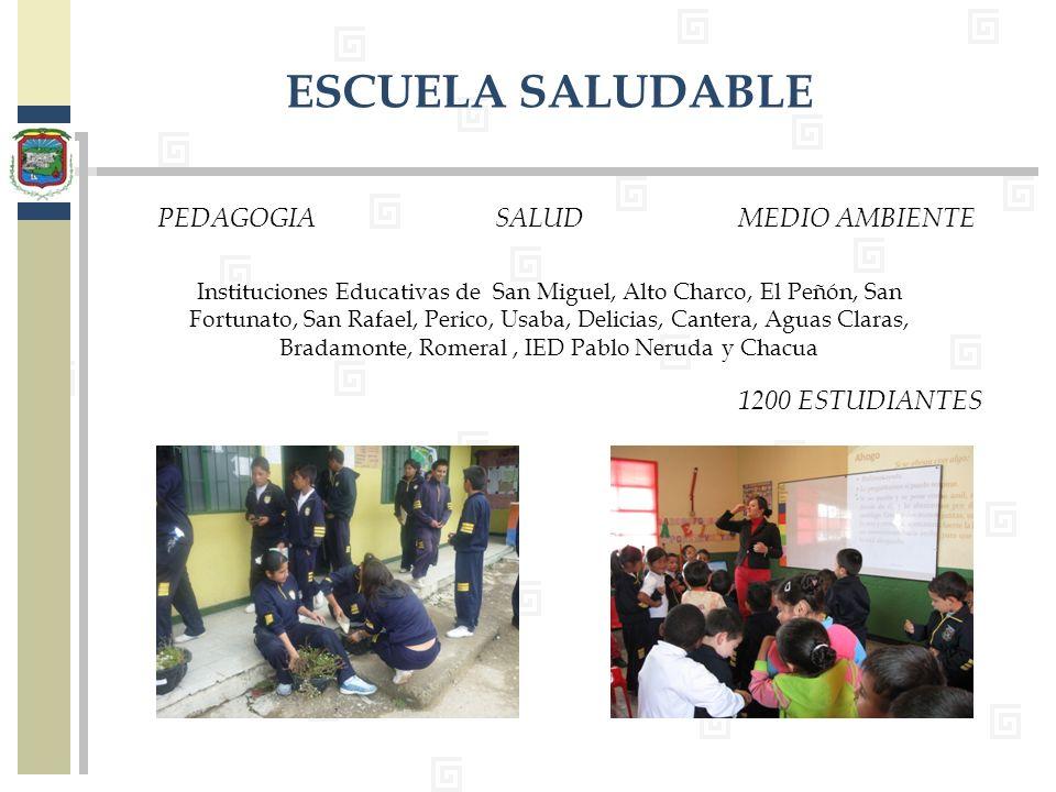 PEDAGOGIASALUDMEDIO AMBIENTE Instituciones Educativas de San Miguel, Alto Charco, El Peñón, San Fortunato, San Rafael, Perico, Usaba, Delicias, Canter