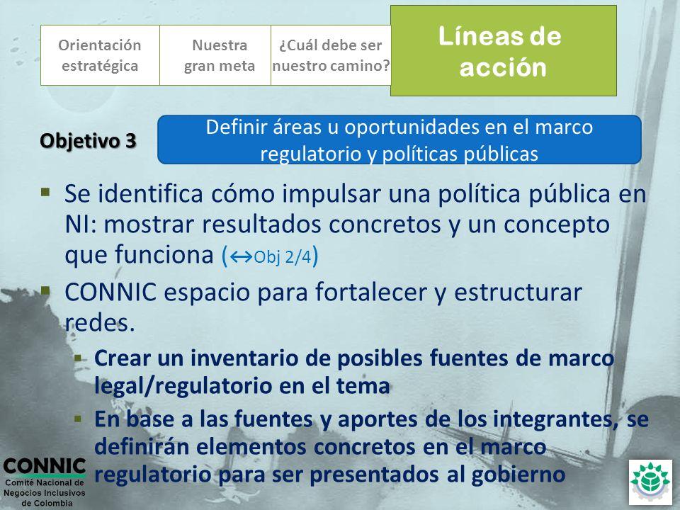 Orientación estratégica Se identifica cómo impulsar una política pública en NI: mostrar resultados concretos y un concepto que funciona (Obj 2/4 ) CONNIC espacio para fortalecer y estructurar redes.