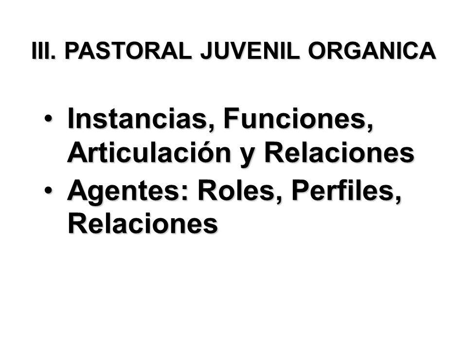 III. PASTORAL JUVENIL ORGANICA Instancias, Funciones, Articulación y RelacionesInstancias, Funciones, Articulación y Relaciones Agentes: Roles, Perfil