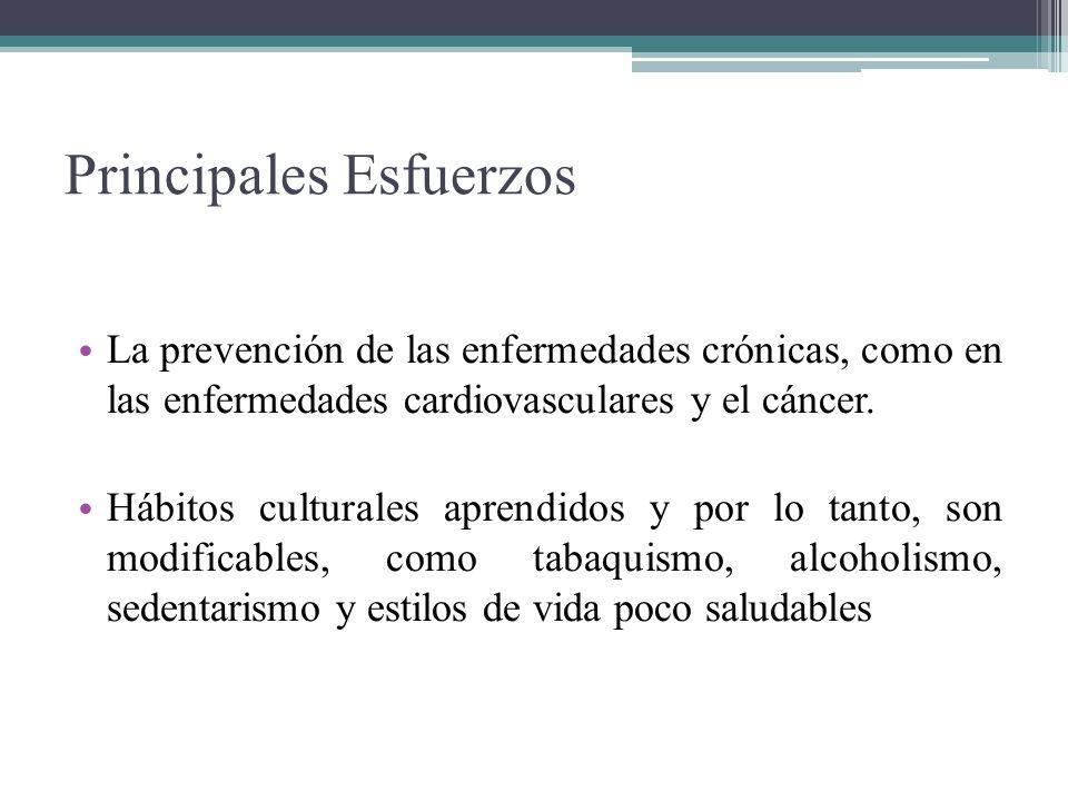 Principales Esfuerzos La prevención de las enfermedades crónicas, como en las enfermedades cardiovasculares y el cáncer. Hábitos culturales aprendidos