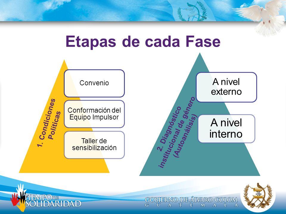 Convenio Conformación del Equipo Impulsor Taller de sensibilización A nivel externo A nivel interno 2. Diagnóstico institucional de género (Autoanális