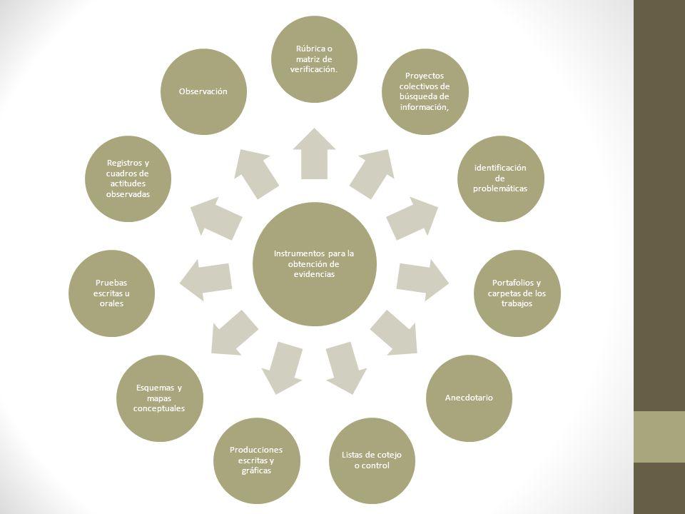 La cartilla de educación básica en el marco de la de la evaluación formativa: aportes pedagógicos.