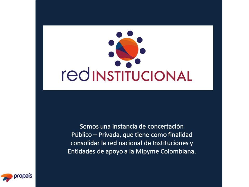 Somos una instancia de concertación Público – Privada, que tiene como finalidad consolidar la red nacional de Instituciones y Entidades de apoyo a la