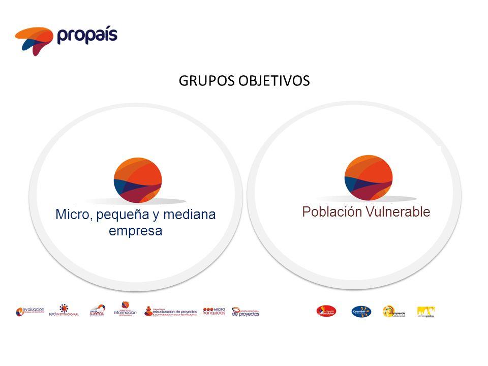 Micro, pequeña y mediana empresa GRUPOS OBJETIVOS Población Vulnerable