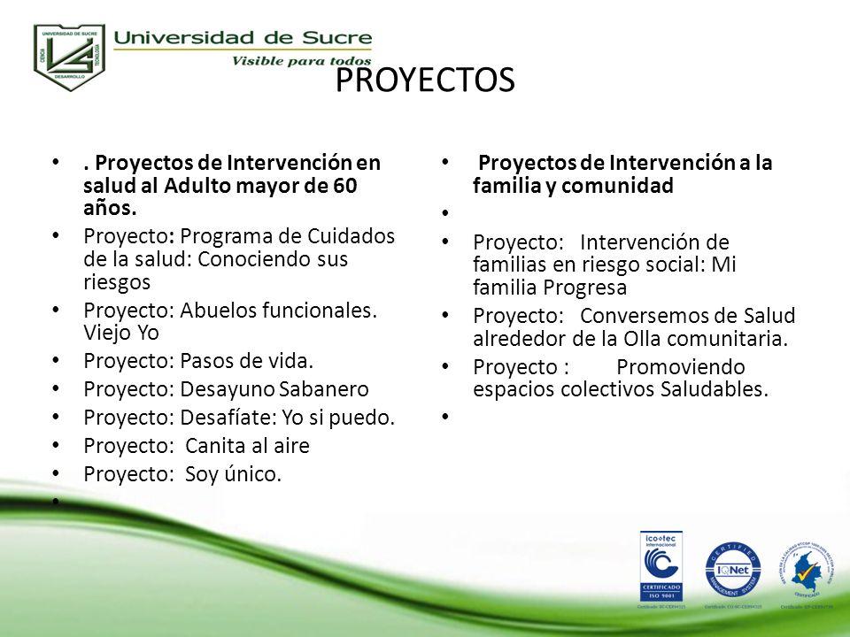 PROYECTOS.Proyectos de Intervención en salud al Adulto mayor de 60 años.