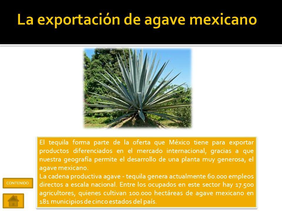 Las frutas y hortalizas tienen un rol muy importante dentro de la promoción de productos mexicanos como parte del comercio internacional, en la compra