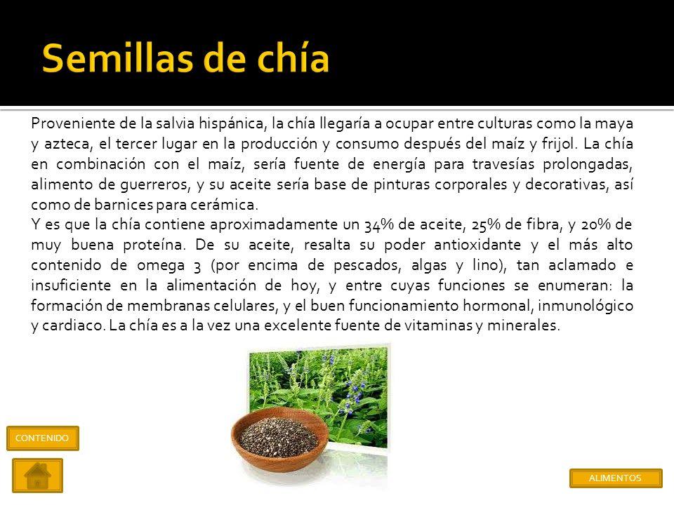 Semillas de chía Amaranto y Huazontle Aguamiel, pulque, miel de maguey Insectos Chaya CONTENIDO