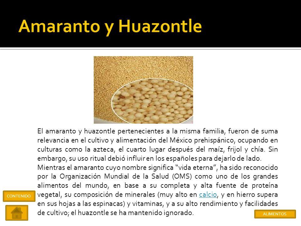 Proveniente de la salvia hispánica, la chía llegaría a ocupar entre culturas como la maya y azteca, el tercer lugar en la producción y consumo después