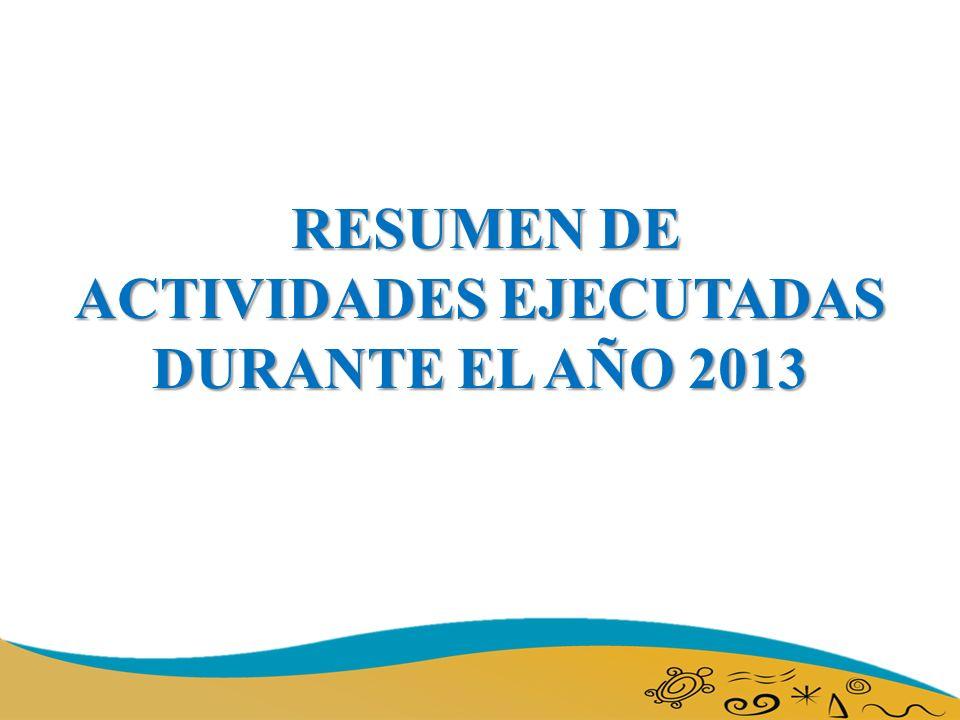 RESUMEN DE ACTIVIDADES EJECUTADAS DURANTE EL AÑO 2013 RESUMEN DE ACTIVIDADES EJECUTADAS DURANTE EL AÑO 2013