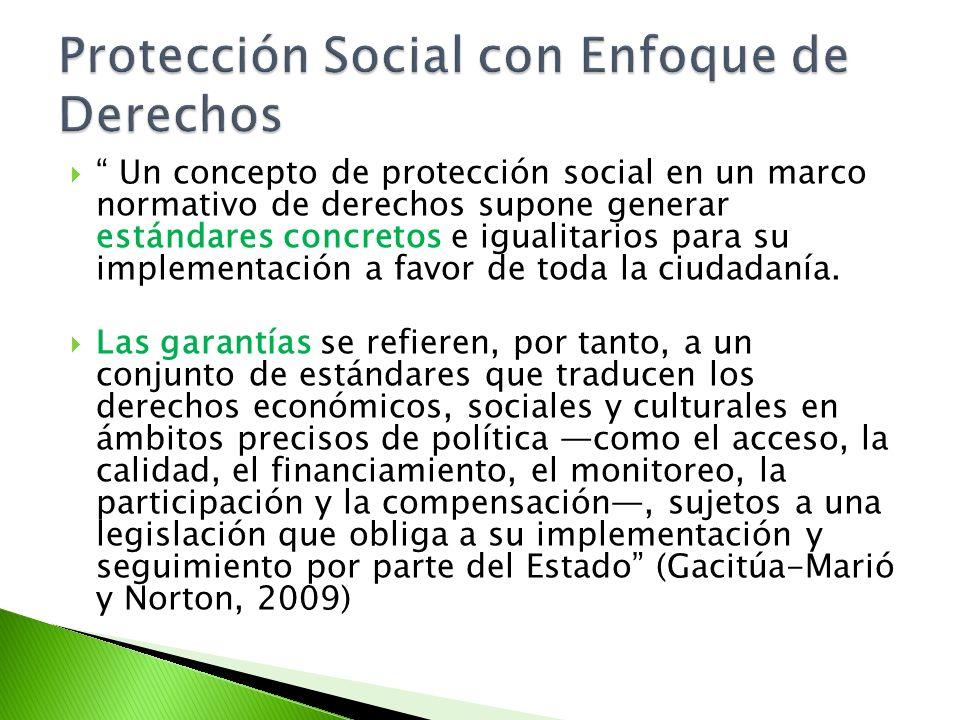 Un concepto de protección social en un marco normativo de derechos supone generar estándares concretos e igualitarios para su implementación a favor d