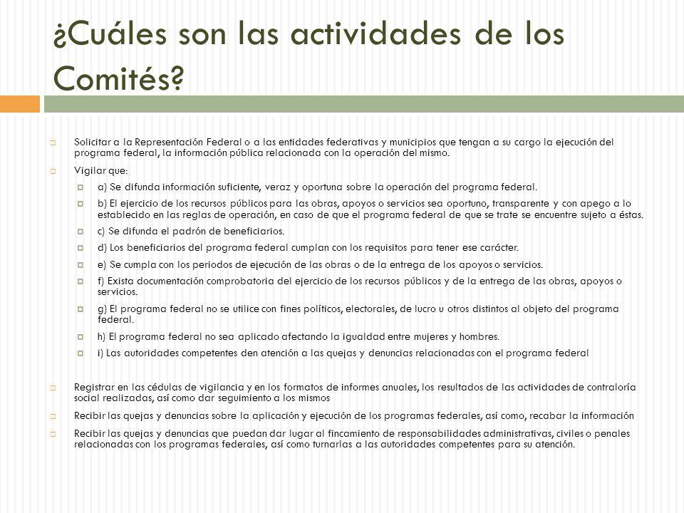¿Cuáles son las actividades de los Comités.