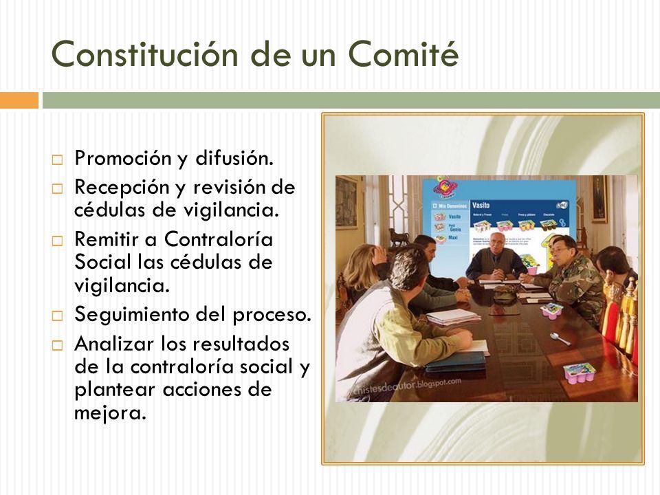 Constitución de un Comité Promoción y difusión.Recepción y revisión de cédulas de vigilancia.