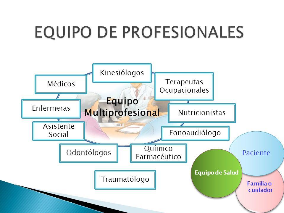 Equipo Multiprofesional Médicos Kinesiólogos Terapeutas Ocupacionales Nutricionistas Enfermeras Asistente Social Fonoaudiólogo Odontólogos Químico Far