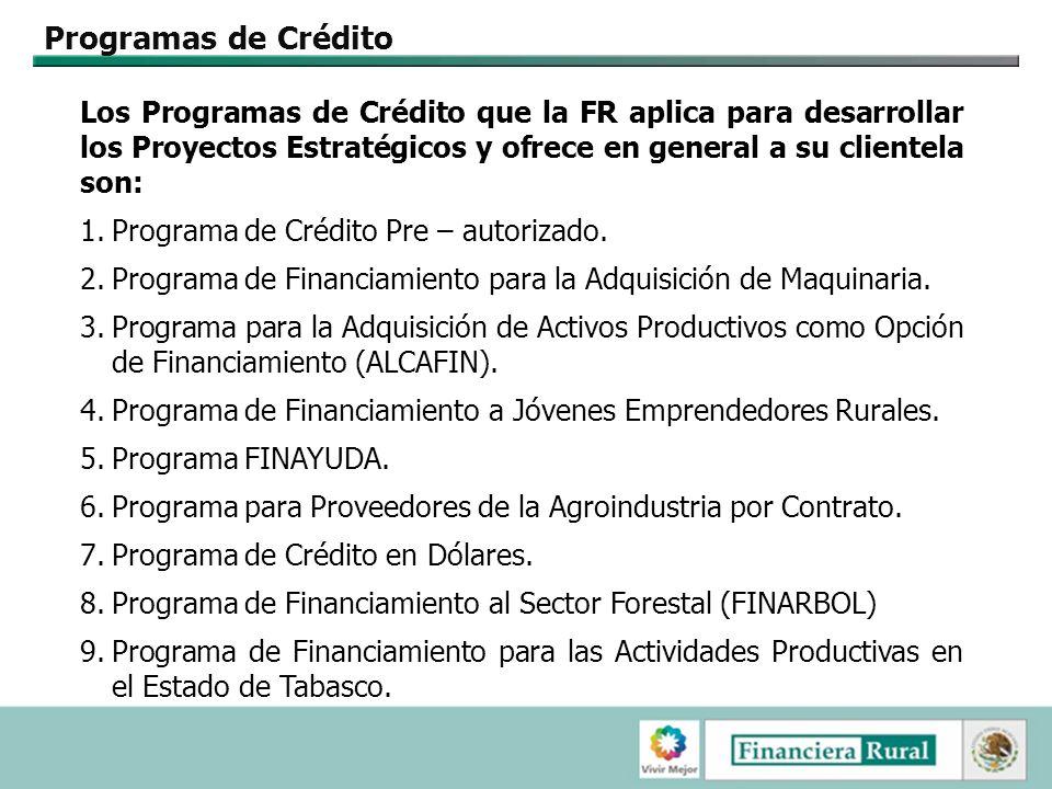 Programas de Crédito Los Programas de Crédito que la FR aplica para desarrollar los Proyectos Estratégicos y ofrece en general a su clientela son: 1.Programa de Crédito Pre – autorizado.