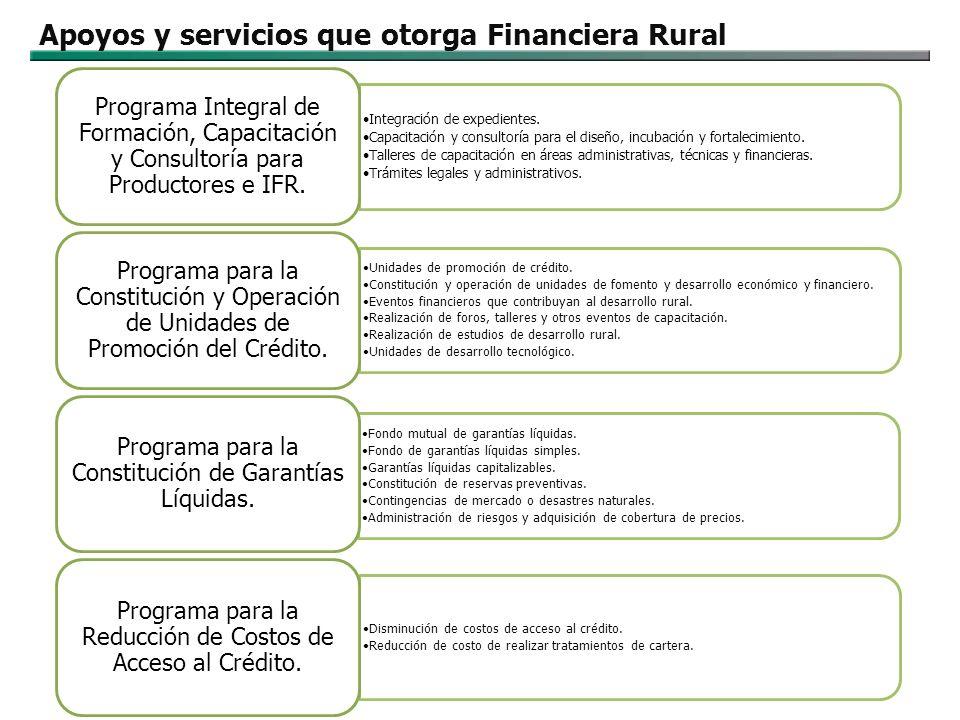 Alianzas estratégicas para apoyos y subsidios Instancia ejecutora de SAGARPA: Trópico Húmedo, Tecnificación de Riego, Agricultura Protegida, FIMAGO PROVAR FOINI Programa de Jóvenes Emprendedores Rurales.