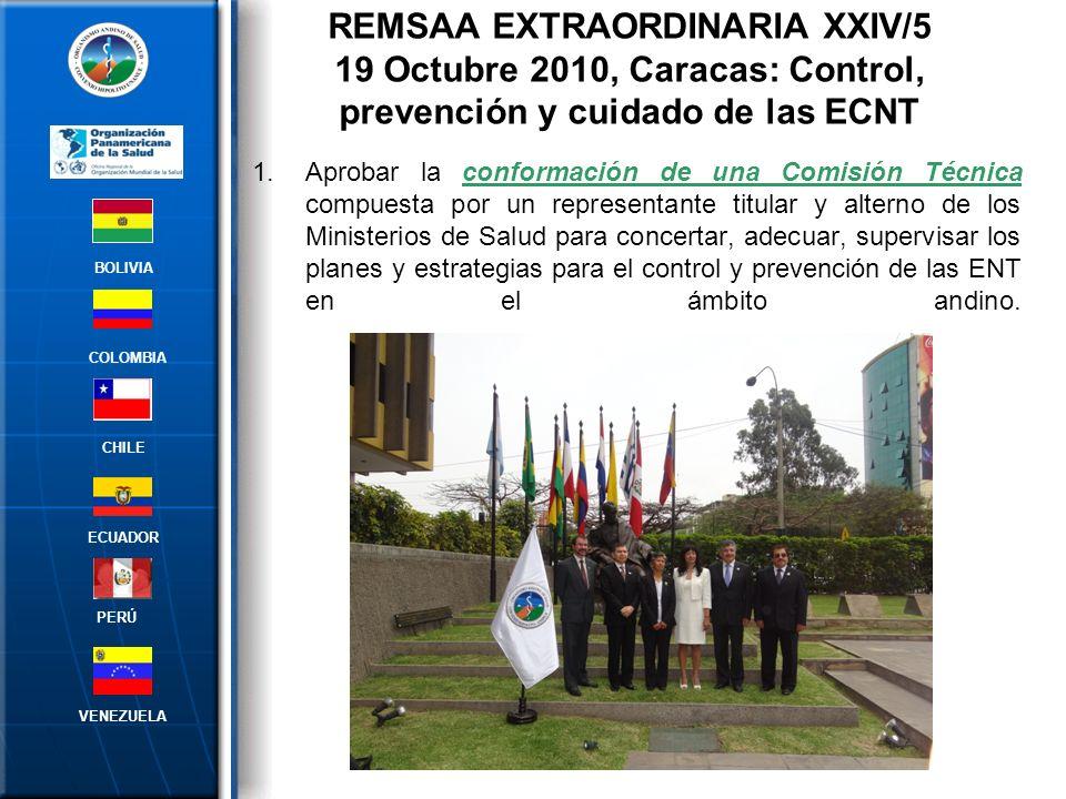 2.Encargar a esta Comisión, la preparación de un Plan Estratégico y Operativo, con el apoyo técnico de la OPS, instituciones técnicas competentes y en coordinación con el ORAS-CONHU; teniendo como base las recomendaciones establecidas en el Acta de la Reunión Subregional del Área Andina de coordinadores de los programas nacionales de prevención y control de enfermedades crónicas , abril del 2010, Lima, Perú.
