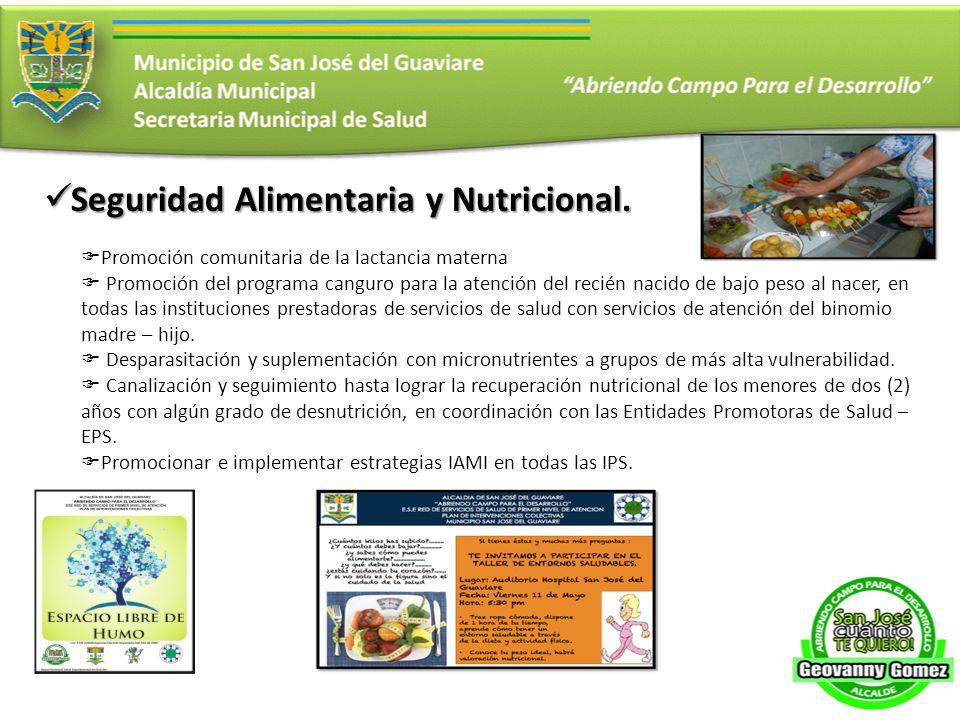 Seguridad Alimentaria y Nutricional. Seguridad Alimentaria y Nutricional. Promoción comunitaria de la lactancia materna Promoción del programa canguro