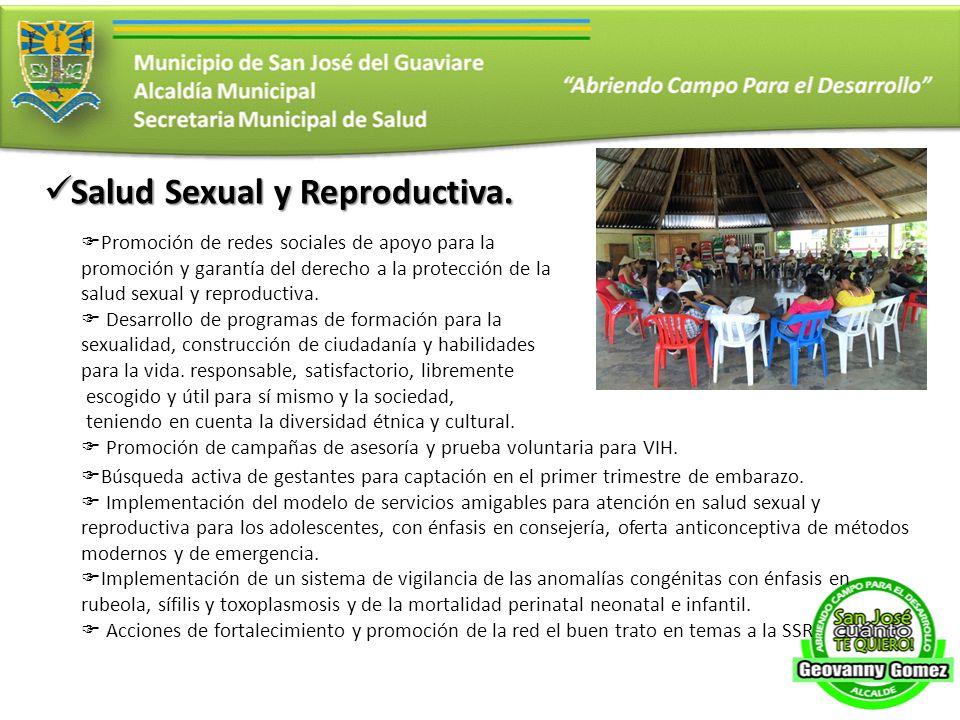 Salud Sexual y Reproductiva. Salud Sexual y Reproductiva. Promoción de redes sociales de apoyo para la promoción y garantía del derecho a la protecció