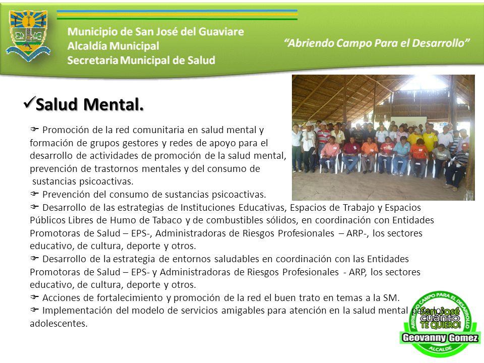 Salud Mental. Salud Mental. Promoción de la red comunitaria en salud mental y formación de grupos gestores y redes de apoyo para el desarrollo de acti