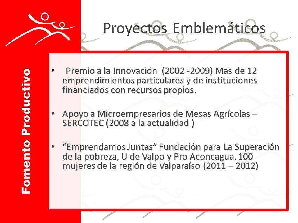 Proyectos Emblemáticos Premio a la Innovación (2002 -2009) Mas de 12 emprendimientos particulares y de instituciones financiados con recursos propios.