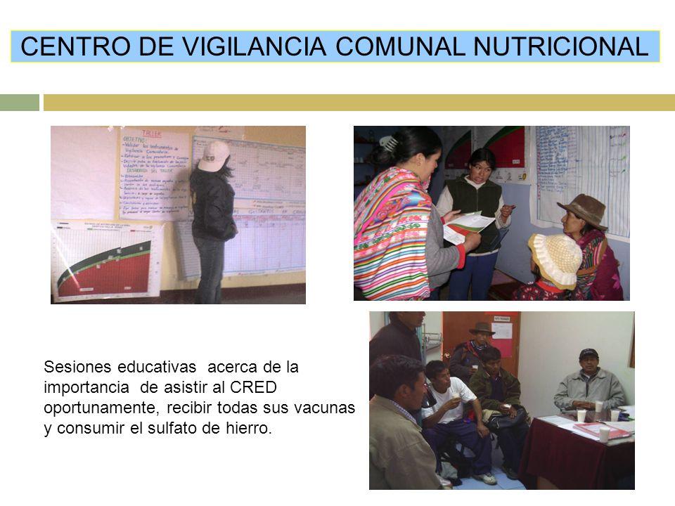 Sesiones educativas acerca de la importancia de asistir al CRED oportunamente, recibir todas sus vacunas y consumir el sulfato de hierro.