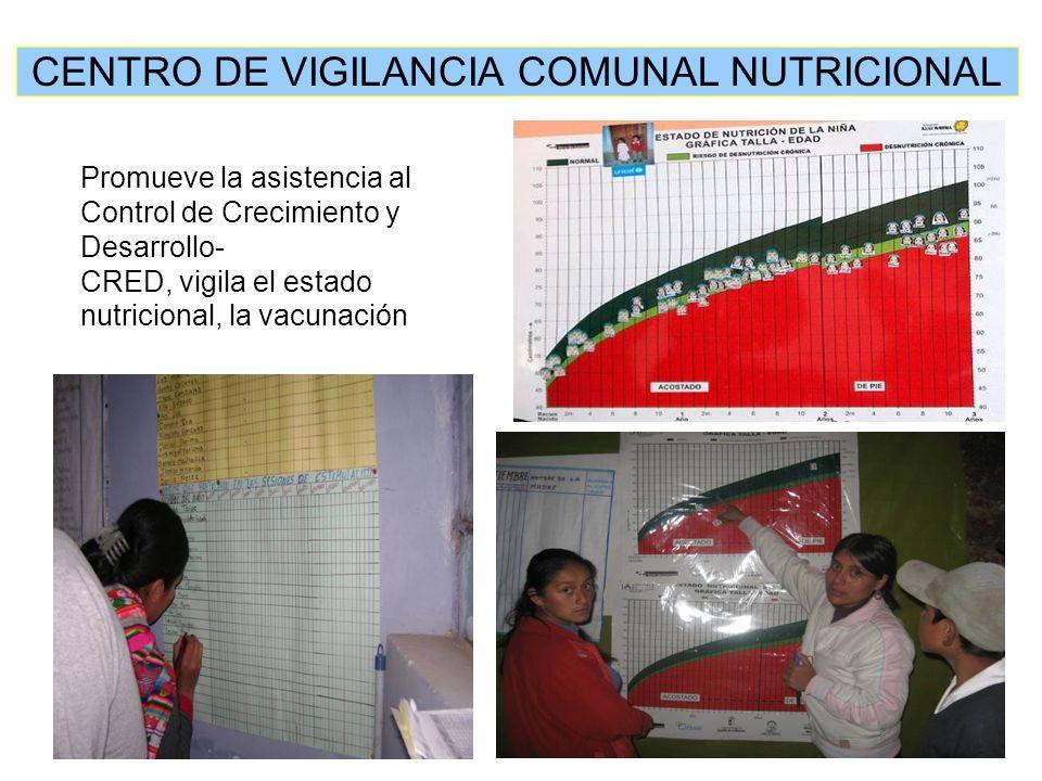 Promueve la asistencia al Control de Crecimiento y Desarrollo- CRED, vigila el estado nutricional, la vacunación CENTRO DE VIGILANCIA COMUNAL NUTRICIONAL