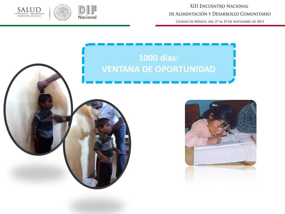 1000 días: VENTANA DE OPORTUNIDAD