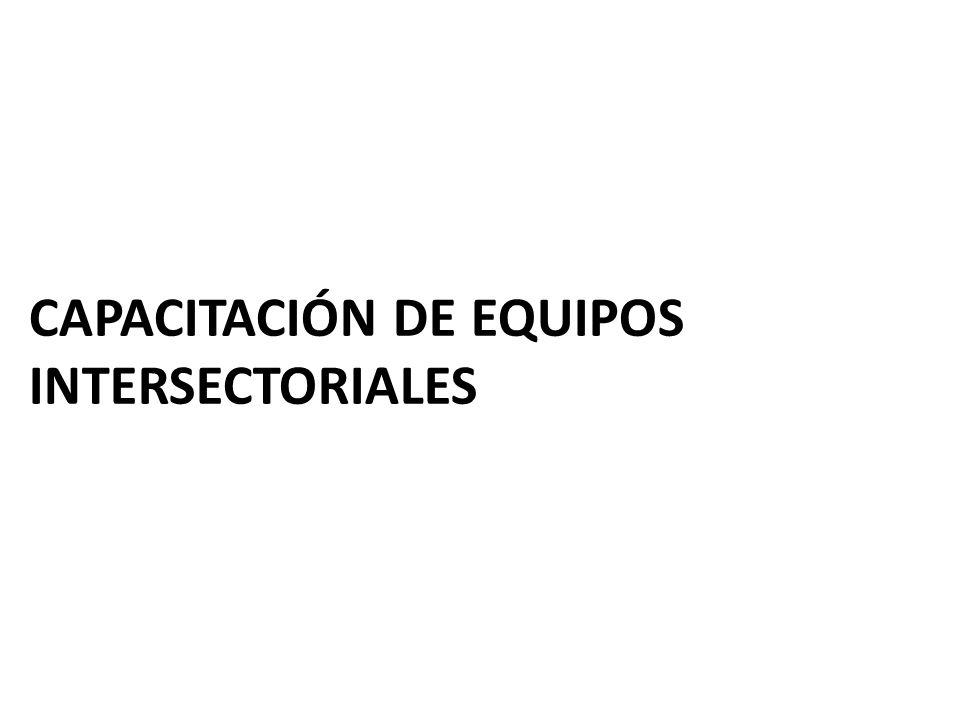 CAPACITACIÓN DE EQUIPOS INTERSECTORIALES