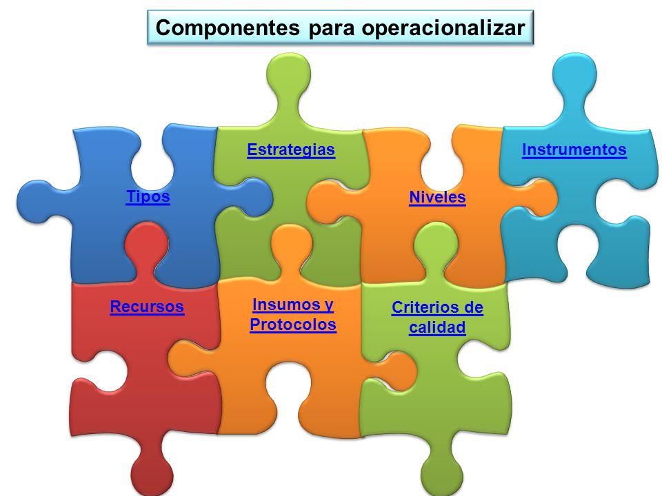 Estrategias Insumos y Protocolos Insumos y Protocolos Recursos Tipos Niveles Criterios de calidad Criterios de calidad Instrumentos Componentes para o