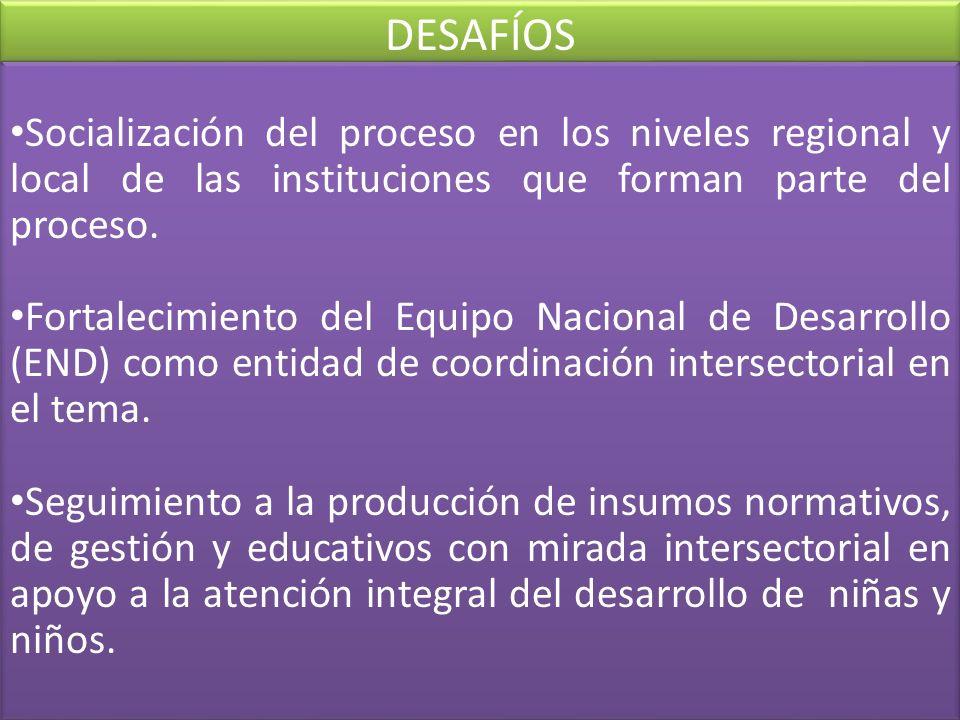 Socialización del proceso en los niveles regional y local de las instituciones que forman parte del proceso. Fortalecimiento del Equipo Nacional de De