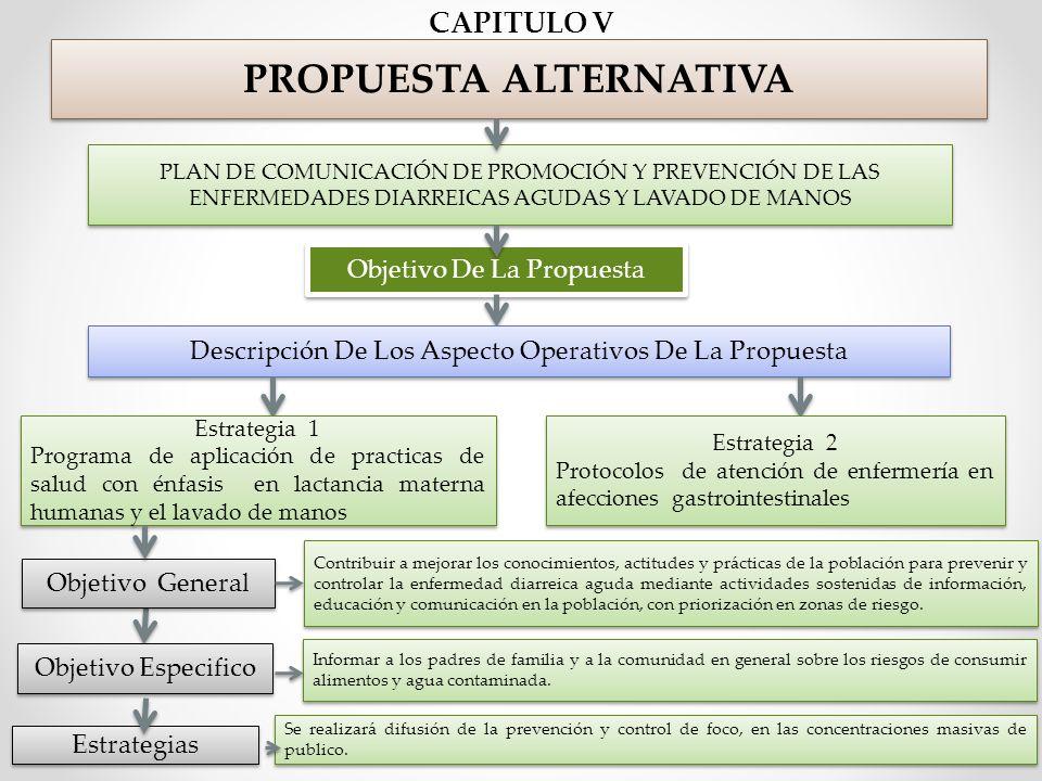 PROPUESTA ALTERNATIVA CAPITULO V Objetivo De La Propuesta Descripción De Los Aspecto Operativos De La Propuesta Estrategia 1 Programa de aplicación de