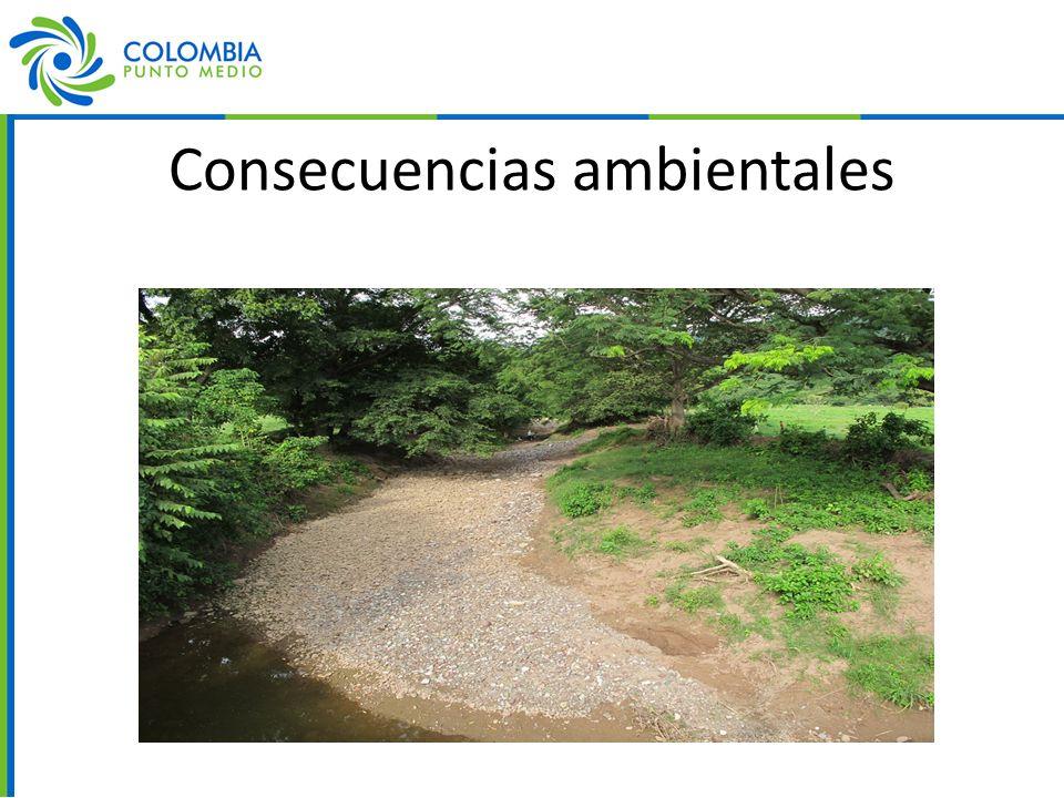 Consecuencias ambientales