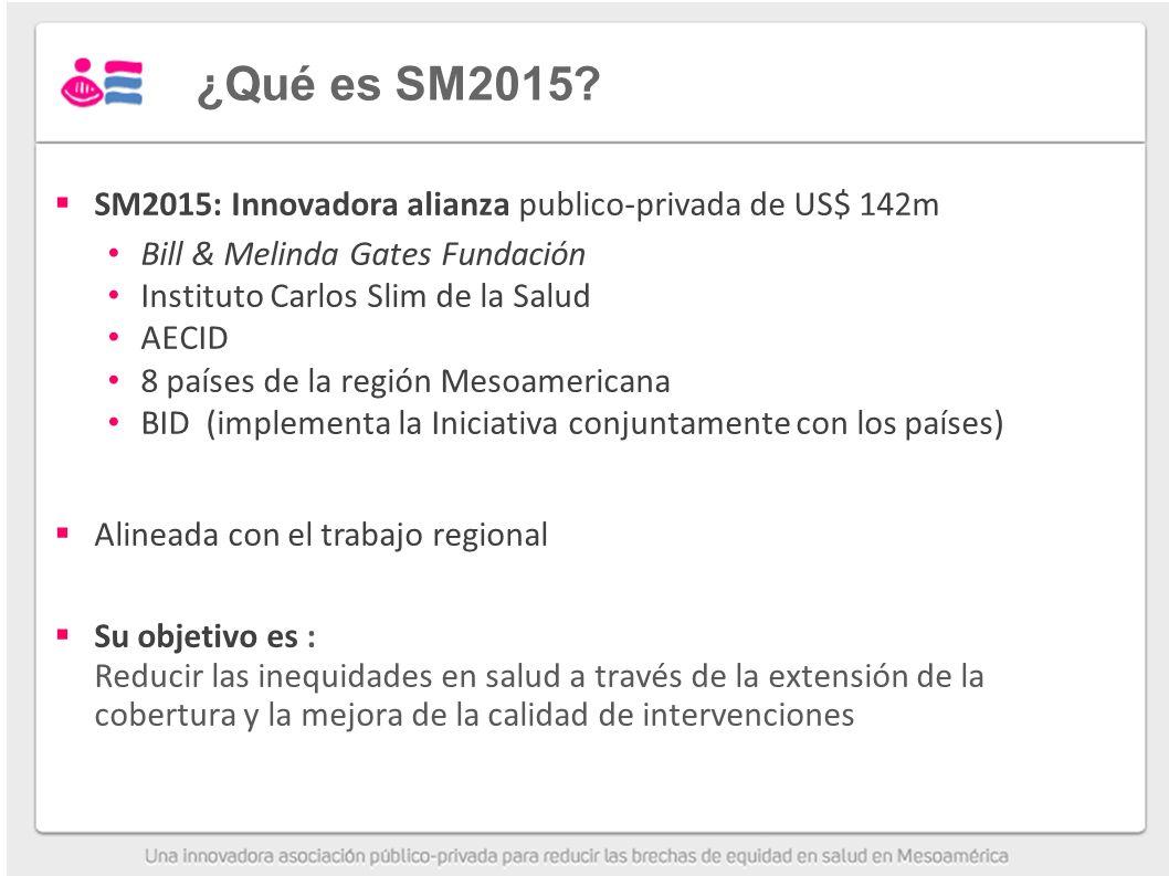 ¿Qué es SM2015.