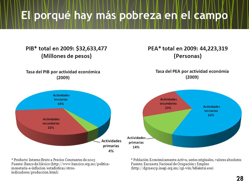 28 PIB* total en 2009: $32,633,477 (Millones de pesos) * Producto Interno Bruto a Precios Constantes de 2003 Fuente: Banco de México (http://www.banxico.org.mx/politica- monetaria-e-inflacion/estadisticas/otros- indicadores/produccion.html) * Población Económicamente Activa, series originales, valores absolutos Fuente: Encuesta Nacional de Ocupación y Empleo (http://dgcnesyp.inegi.org.mx/cgi-win/bdieintsi.exe) PEA* total en 2009: 44,223,319 (Personas) El porqué hay más pobreza en el campo