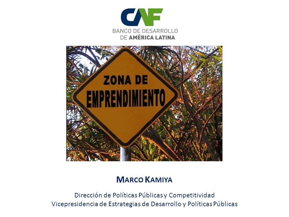 M ARCO K AMIYA Dirección de Políticas Públicas y Competitividad Vicepresidencia de Estrategias de Desarrollo y Políticas Públicas
